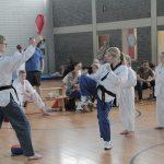 Taekwondo Kerpen: Weihnachtsturnier der SSK-Taekwondo-Abteilung